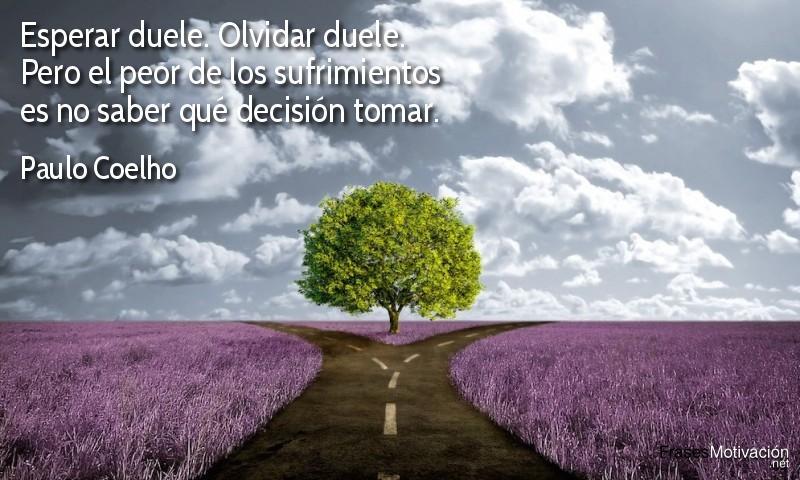 Esperar duele. Olvidar duele. Pero el peor de los sufrimientos es no saber qué decisión tomar.  - Paulo Coelho