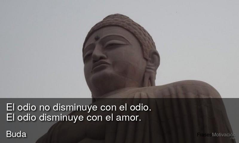El odio no disminuye con el odio. El odio disminuye con el amor.  - Buda