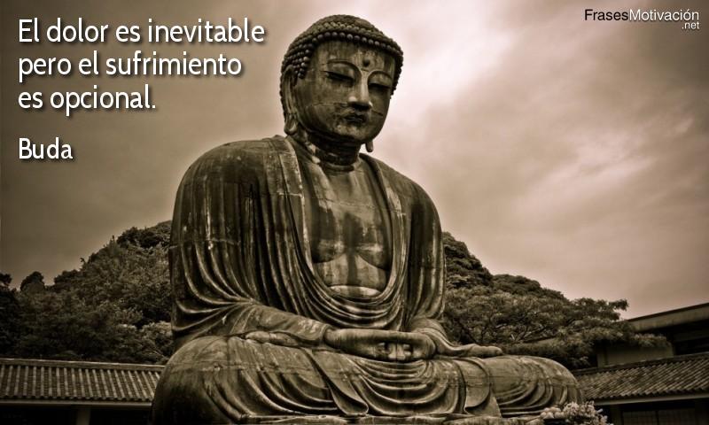 El dolor es inevitable pero el sufrimiento es opcional. - Buda