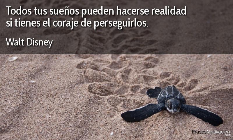 Todos tus sueños pueden hacerse realidad si tienes el coraje de perseguirlos. - Walt Disney
